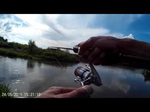 ловля жереха на воблеры на спиннинг на москве реке видео
