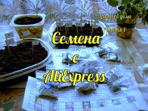Как сажать семена орхидеи из алиэкспресс