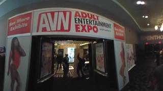 2017 AVN EXPO In 360°