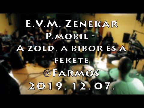 [ÉLŐ] E.V.M. koncert 2019. 12. 07. - P.mobil - A zöld, a bíbor és a fekete @Farmos