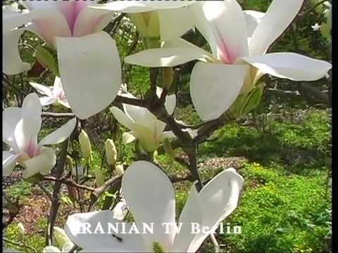 IRANIAN TV Berlin 8.5.2011 Nachrichten+Local News  u. zum Muttertag مادر.روزت مبارک