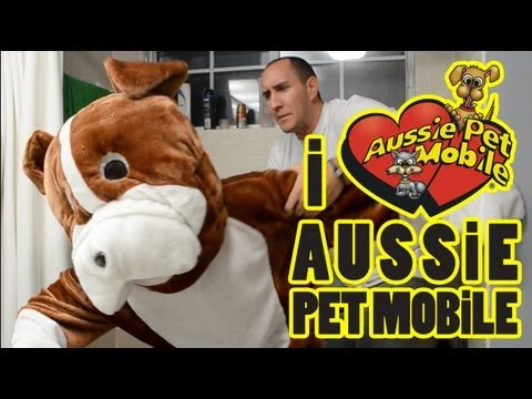0 Mobile Pet Grooming with Aussie Pet Mobile