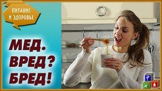 Польза и вред меда. Мифы и реальность о пользе меда. Можно ли есть много меда?