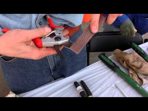 A Master Gardner explains how to Sharpen Pruning Shears and other Garden tools
