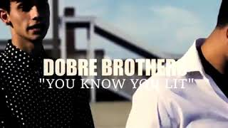 Song by the Dobre Brothers. Hit it like you don't care