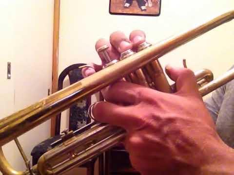 Trompeta - Vivir Mi Vida