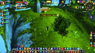Arathi-Action with Kaltelf // LvL 80 Fire Mage WoW Patch 3.3.5