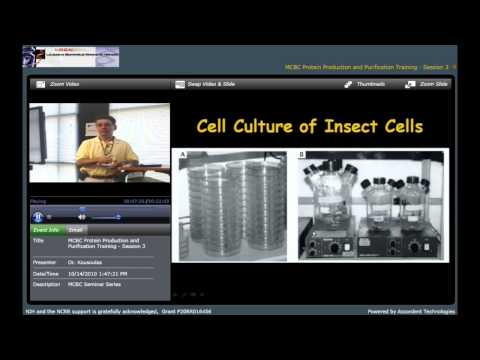 Expression and Purification of Recombinant Proteins Using the Baculovirus/Insect Cell Culture System