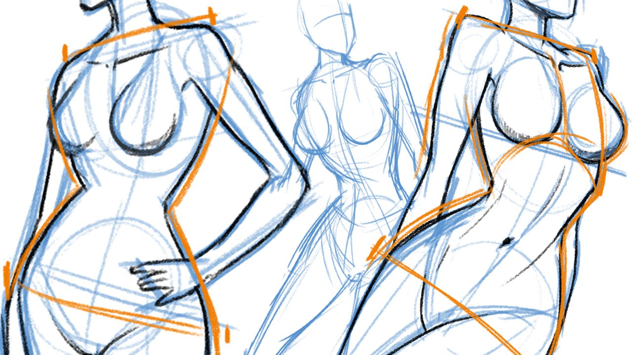 Figure drawing Basic Pose and Construction