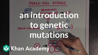 An introduction to genetic mutations | Biomolecules | MCAT | Khan Academy