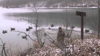 Indiana BIG water honker hunt with Stumblin
