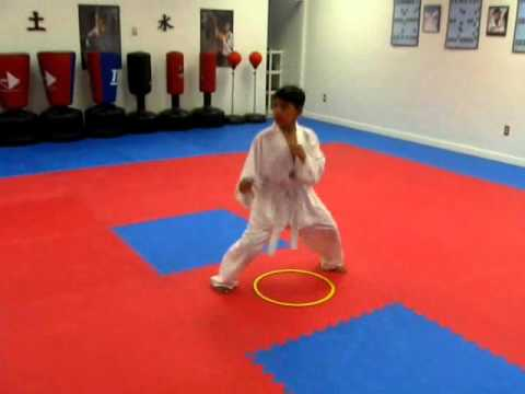 TAEKWONDO TRAINING FOR KIDS Image 1