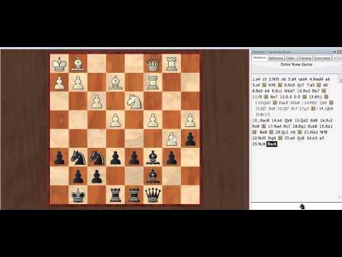 дебют в шахматах за белых видео
