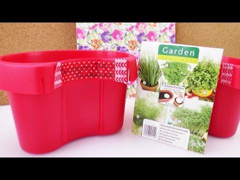 Mini Kräuter Garten Anlegen | Aldi Haul & Demo | Kräuter Für Die Küche Selber Säen | Frühling Idee