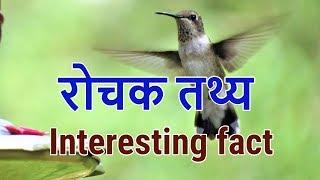 Interesting fact - 7