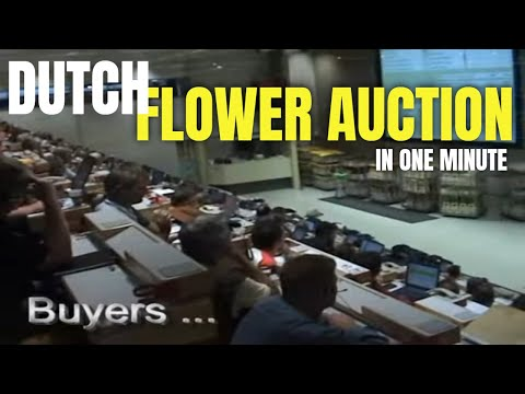 1,000 flowers auctioned per second in Holland