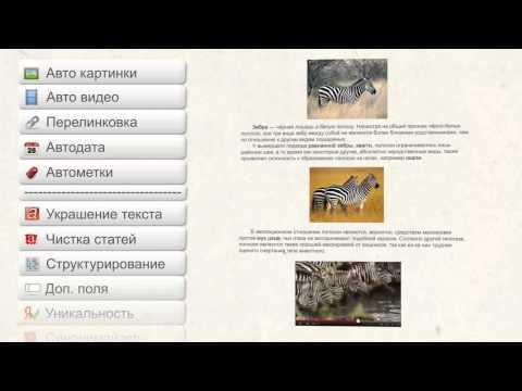 Зеброид - промо видео