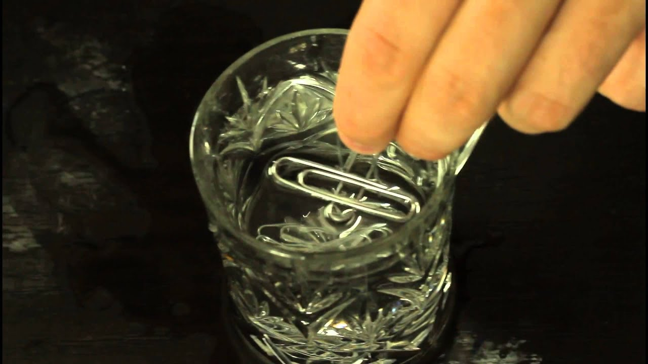 Water Surface Tension Experiment Surface Tension Experiment