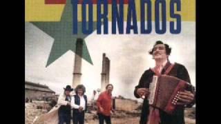 Watch Texas Tornados In My Mind video