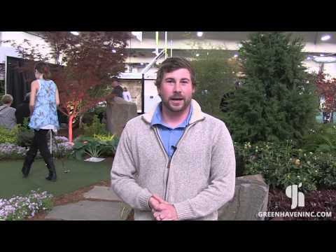 Landscape Maintenance - from Greenhaven Landscapes in Vancouver WA