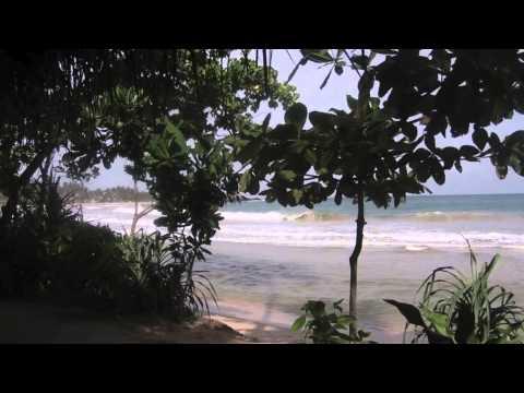 ONE MINUTE MIRISSA - Mini Travel Guide