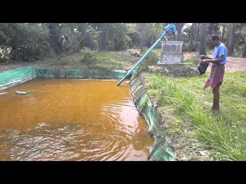 Tarpaulin for Tarpaulin fish pond