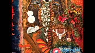 "Mental Physix - ""The Ganesh Sesh"" [DJ Mix: Deep Beats & Yoga]"