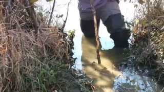 Simple Trapping Sets   Beaver Foothold