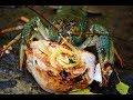 Ловля раков на шашлык,новый эксперимент ( Дневник рыболова )