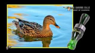 Buck Gardner Calls - Double Nasty II Duck Call