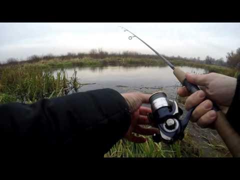 рыбалка в жабовниках видео