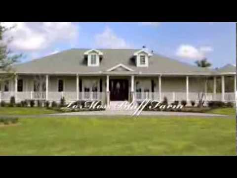 Moss Bluff Farm Equestrian Dream Farm For Sale Ocklawaha Florida