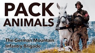 Pack Animals - the German Mountain Infantry Brigade