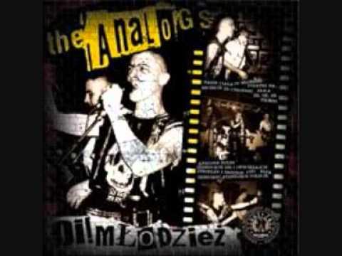 Analogs - Oi Mlodziez