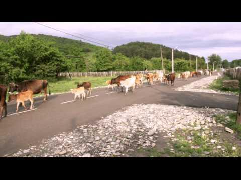 Azerbaijan | Vlasroute - travelling the Silkroad