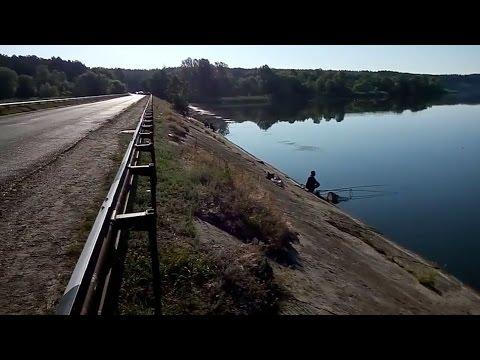 старый салтов дамба рыбалка видео
