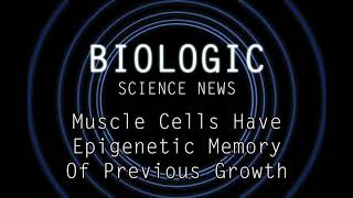 Science News - Muscle Cells Have Epigenetic Memory Of Previous Growth