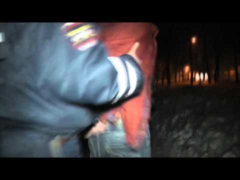 Водитель ударил командира ДПС. Место происшествия 31.03.2015