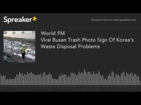 Viral Busan Trash Photo Sign Of Korea's Waste Disposal Problems