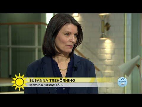 """3 hot mot valet 2018: """"Främmande makt avser att påverka"""" - Nyhetsmorgon (TV4)"""