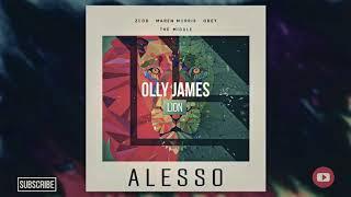 Olly James Vs. Alesso Vs. Zedd - Lion Vs. Raise Your Head Vs. The Middle (Hardwell TML 2018 Mashup)
