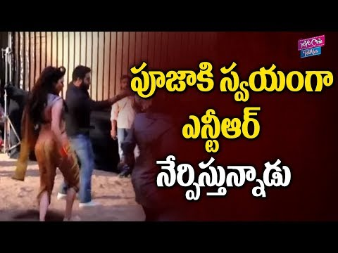 Pooja Hegde Gets Training from Tollywood Badsha Jr NTR || YOYO Cine Talkies