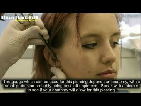 Anti Tragus Piercing: How to Get Cartilage Piercings with Blue Banana