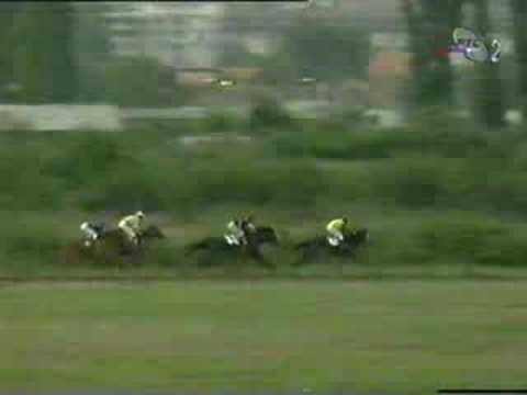 """""""Kup Ljubiceva"""" 1998. godine"""