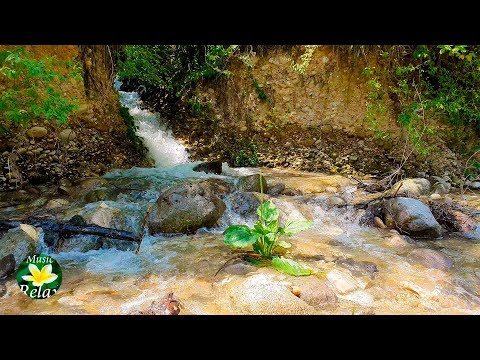 Beautiful mountain stream and Relaxing Sound of Flowing Water