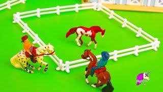 Wild Horse Caught ! Breyer Mini Whinnies Horses Toy Video