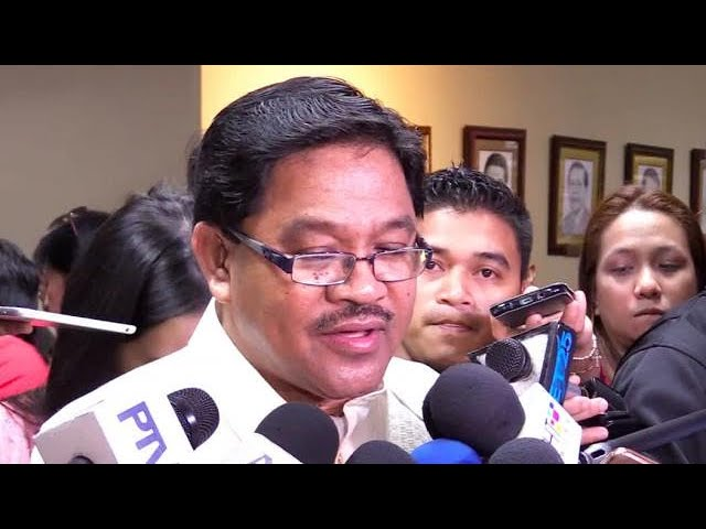 CA defers confirmation of DAR chief Mariano