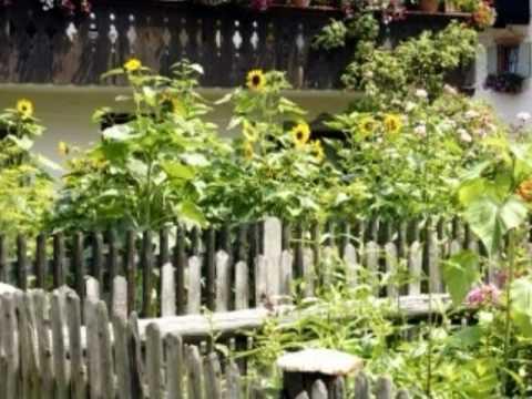 Vegetable Garden Fencing Vegetable Garden Fence Ideas