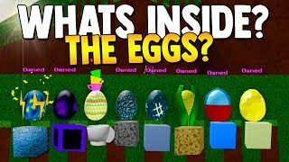HATCHED EGGS UPDATE!? (NEW Blocks & More!)   Build a boat For Treasure ROBLOX