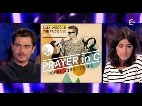 Lily Wood & The Prick - On n'est pas couché 6 septembre 2014 #ONPC